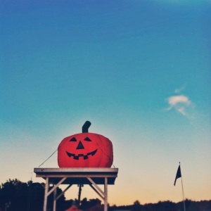 the great pumpkin at hill ridge farms // the modern locket